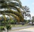 Daytona RV Park & Tropical Gardens